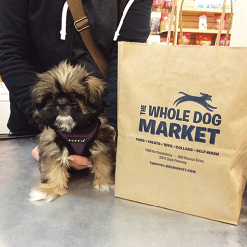 The Whole Dog Market will provide treats!